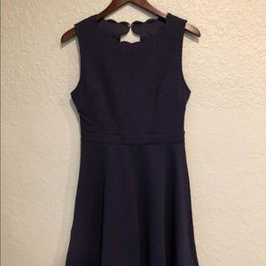 NWT Size M Francesca's Dress 👗